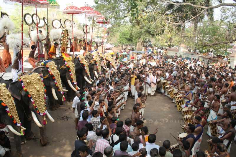 A scene from Thrissur Pooram in Kerala