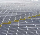 India launches World's largest solar plant