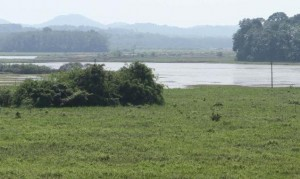 Aranmula airport land