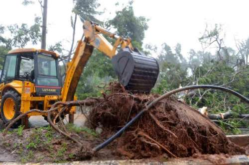 A bulldozer removes an uprooted tree from a road in Visakhapatnam after cyclonic storm Hudhud crosses the coast near the city .