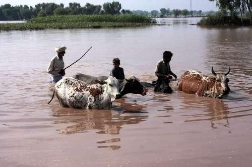 PAKISTAN-LAHORE-WEATHER-FLOOD