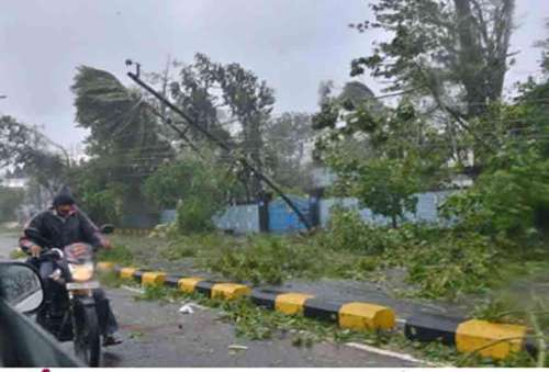 Uprooted trees and bent electric pole as as cyclonic storm Hudhud crosses the coast near the city