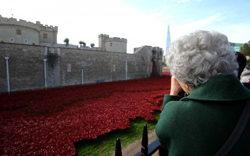 """A senior citizen visits the ceramic poppies, an art installation """"Blood Swept Lands and Seas of Red"""" in the moat of the Tower of London, in London"""
