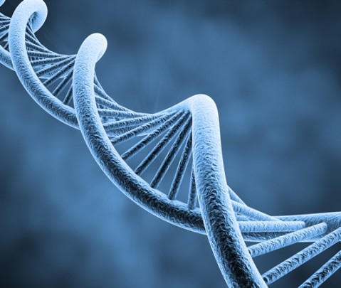 Altered DNA helped early humans to smoke