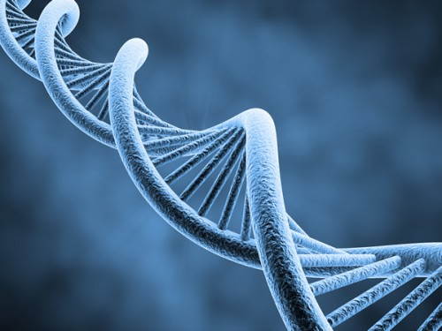 gene therapy dna