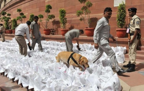 A sniffer dog inspect the documents pertaining to Rail budget 2015-16 for explosives before they are taken inside the Parliament in New Delhi