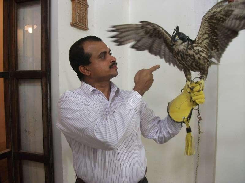 Dr Zubair with falcon