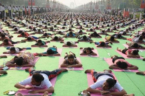 Thousands of participants performs Yoga during a full dress rehearsal for the International Yoga Day at Rajpath in New Delhi on June 19, 2015.