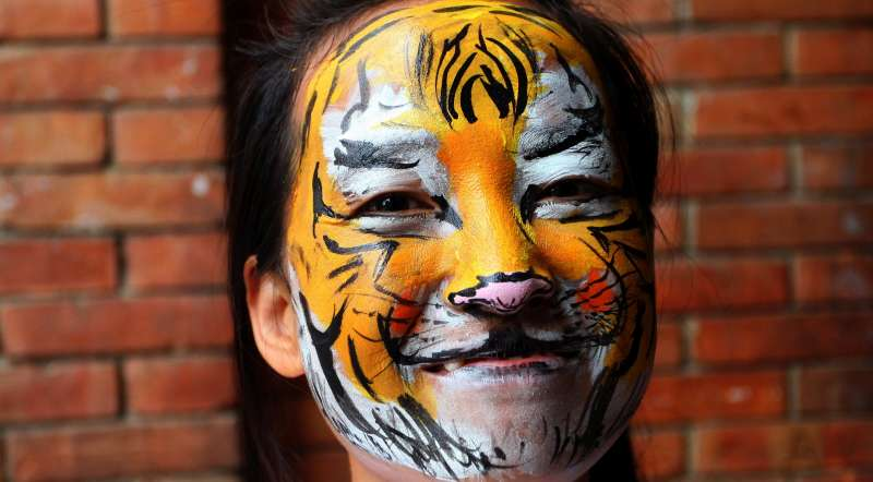 A Nepalese girl smiles with her face painted as a tiger during a program marking International Tiger day in Kathmandu, Nepal, July 29, 2015. International Tiger day is celebrated annually on July 29, aiming to raise awareness for tiger conservation. The population of endangered Royal Bengal Tiger (Panthera Tigris Tigris) in Nepal is estimated to 163-235 breeding adults, comprising the numbers in various National Parks and Wildlife Reserves.