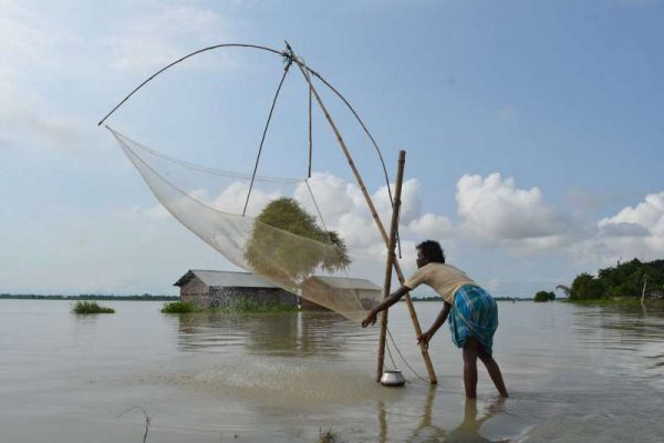A fisherman in Assam uses a Chinese net