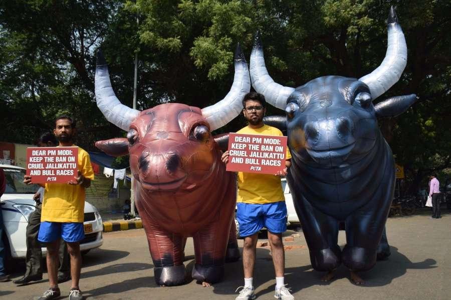 New Delhi: PETA activists stage a demonstration against Jallikattu in New Delhi, on Oct 26, 2016. (Photo: IANS)