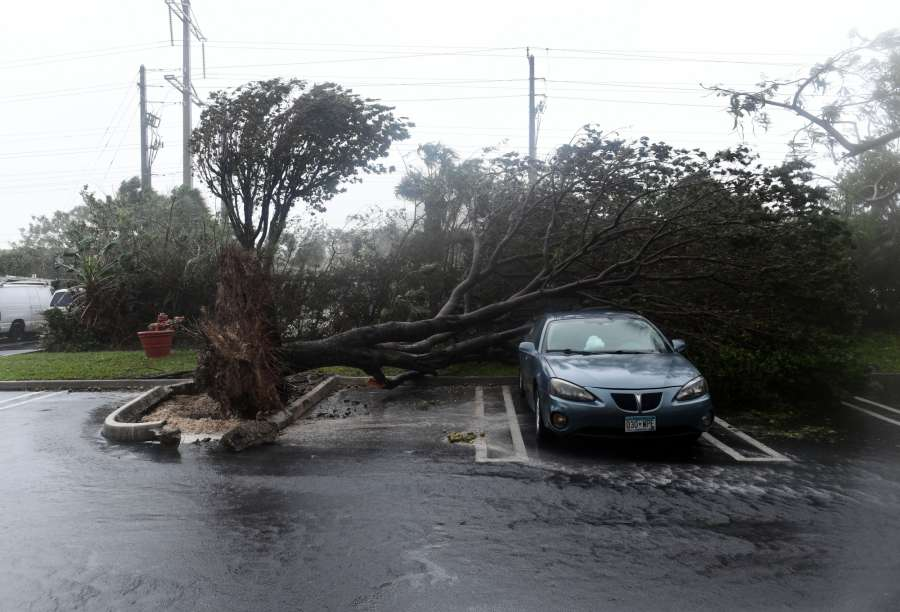 MIAMI, Sept. 10, 2017 (Xinhua) -- A tree is toppled onto a car after being knocked down by strong winds as hurricane Irma arrives, in Miami, Florida, the United States, on Sept. 10, 2017. Hurricane Irma on Sunday morning made landfall in the Florida Keys with gust wind speed of 171 km/h, according to the National Hurricane Center (NHC). (Xinhua/Yin Bogu/IANS) by .