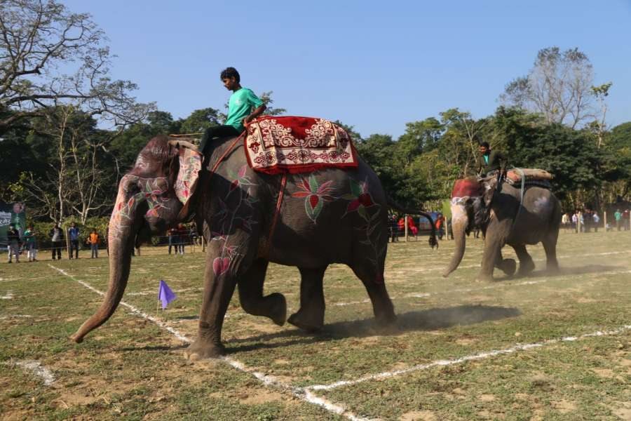 CHITWAN, Dec. 29, 2017 (Xinhua) -- An elephant reaches the finishing line in elephant fast walking race during the 14th Elephant Festival in Sauraha, a tourism hub in southwest Nepal's Chitwan district, Dec. 29, 2017. The five-day event, organized by the Regional Hotel Association of Sauraha in Chitwan National Park, aims to bring humans closer with elephants, encourage wildlife protection and conservation and promote tourism in the region. (Xinhua/Sunil Sharma/IANS) by .