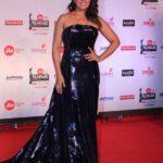 "Mumbai: Actress Richa Chadda at the red carpet of ""63rd Jio Filmfare Awards"" in Mumbai on Jan 20, 2018.(Photo: IANS) by ."