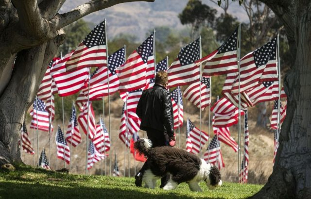 MALIBU, Sept. 11, 2018 (Xinhua) -- A man walks his dog among U.S. national flags erected to honor the victims of the September 11, 2001 attacks in New York, at the campus of Pepperdine University in Malibu, the United States, Sept. 10, 2018. (Xinhua/Zhao Hanrong/IANS) by .