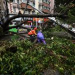 SHENZHEN, Sept. 17, 2018 (Xinhua) -- People clear fallen trees in Futian District of Shenzhen, south China's Guangdong Province, Sept. 17, 2018. Local meteorological authority cancelled the yellow warning against typhoon Monday afternoon. The disaster relief work is underway. (Xinhua/Mao Siqian/IANS) by .