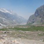 Chhatru, Chandra Valley, Lahaul Spiti H.P, Forest Dept Successful Plantation Drive. (Photo: Milap Sharma) by .