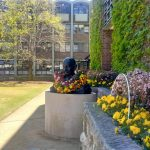 Mahatma Gandhi's bust at University of New South Wales, Sydney. (Photo: IANS) by .