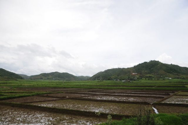 Agriculture in Meghalaya. Photo by Sharada Prasad CS/Wikimedia Commons. by .