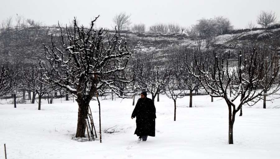 Baramulla: Jammu and Kashmir receives fresh snowfall in Baramulla, on Jan 31, 2019. (Photo: IANS) by .