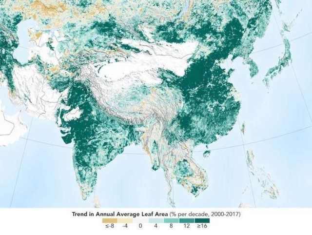 India and China are leading the way in greening lands, thanks to ambitious tree-planting programs and intensive agriculture in both countries. (Photo Credit: NASA) by .