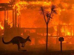 Australian bushfire. (Photo Credit: wholesomeculture/Instagram) by .