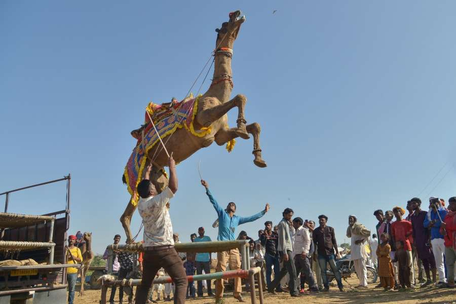 Pushkar Fair. (File Photo: IANS) by .