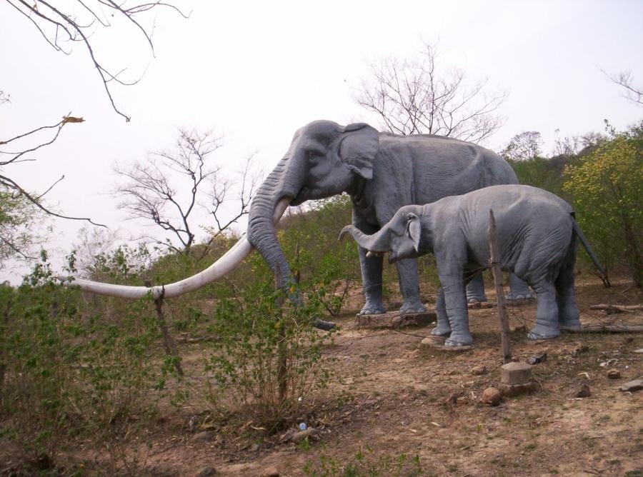 Siwalik Fossil Park. (Photo Courtesy: Wikipedia) by .